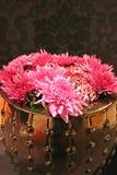 blommavinter Arkivbild