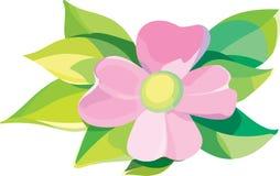 blommaviolet vektor illustrationer