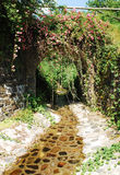 Blommig bro med strömmen Royaltyfri Fotografi