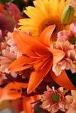 blommig glans Arkivbild