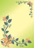 Blommig växt Royaltyfri Foto