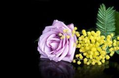 Blommor är på en svart bakgrund med reflexion Arkivfoto