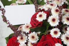 Blommor över vit Royaltyfria Foton