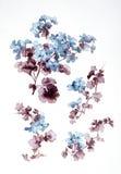 blommor vektor illustrationer