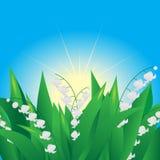 Blommor. Royaltyfria Bilder