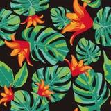 Blommor apelsin och sömlös bakgrund för gräsplansidor Arkivbild