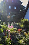 blommor arbeta i trädgården full Arkivfoton