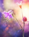 Blommor Art Design Arkivbild