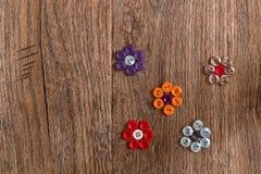 Blommor av den färgrika sömnaden knäppas på en träbakgrund Arkivbilder