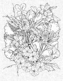 Blommor av kardborren Arkivfoto