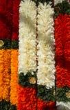 Blommor av Thailand Royaltyfria Bilder