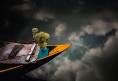 Blommor bevattnar på fotografering för bildbyråer