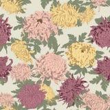 Blommor chrysanthemums Sömlös vektorbakgrund i tappningstil Arkivfoton