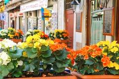Blommor dekorerar det utomhus- kafét på marknaden i Venedig, Italien Royaltyfria Foton