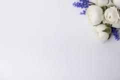 Blommor för besökkortet Arkivbilder