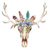 Blommor för bild för vattenfärgboho chic, fjädrar, djura beståndsdelar Royaltyfri Fotografi