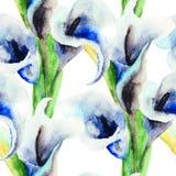 Blommor för Callalilja Arkivbild