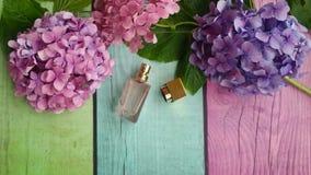 Blommor för doftflaska och vanlig hortensia Royaltyfria Foton