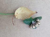 Blommor för guld för nedgång för gulingsidahöst Arkivbild