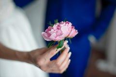 Blommor för handinnehavblomning royaltyfri foto