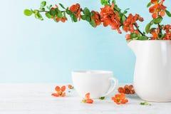Blommor för japansk kvitten för vår med kopp te på blå träbakgrund med kopieringsutrymme 1 livstid fortfarande arkivbild