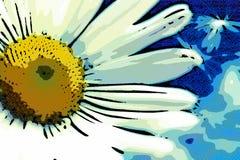 Blommor för maskrosludd- och makrokamomill Royaltyfri Bild