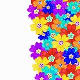 Blommor för primula för kortvårprimulor också vektor för coreldrawillustration Fotografering för Bildbyråer