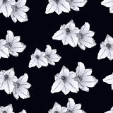 blommor för teckning för författarebakgrundsblack mig Fotografering för Bildbyråer