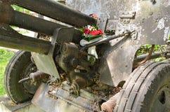 Blommor för veteran Arkivbilder