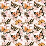 Blommor fjärilar, räcker bokstaven för skriftlig text vattenfärg seamless modell Arkivfoton