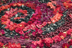 blommor gjorde trevlig röd swirl Royaltyfria Foton