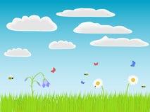 Blommor, gräs och fel Arkivbild