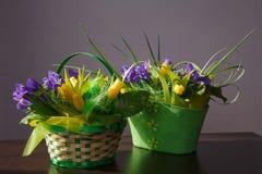 Blommor Gul tulpan- och irisbukett Arkivfoton