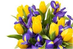 Blommor Gul tulpan- och irisbukett Royaltyfria Foton