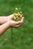 blommor hands mitt Royaltyfri Bild