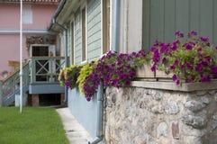 blommor house gammalt Arkivbild