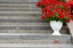 Blommor i blomkruka på stentrappa på sommargatan Arkivfoton