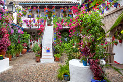 Blommor i blomkruka på väggarna på gator av Cordobf, Spanien royaltyfri foto