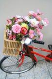Blommor i cykelkorg Arkivfoton