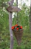 Blommor i dekorativ korg Arkivfoto