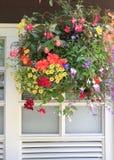 Blommor i den hängande korgen med fönstret. Arkivbilder