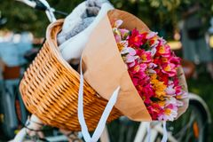 Blommor i en cykelkorg arkivbilder
