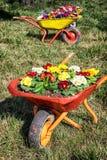 Blommor i en gammal vagn Royaltyfri Bild