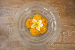 Blommor i en glass platta Arkivbild
