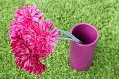 Blommor i en karmosinröd keramisk vas Arkivfoton