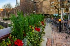 Blommor i en kruka på tabellrestaurangen Arkivbilder