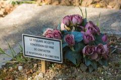 Blommor i en kyrkogård med den övergav gravvalvet royaltyfri bild