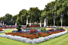 Blommor i en parkera Royaltyfri Bild