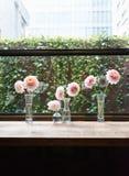 Blommor i en ro Arkivfoton
