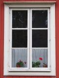 Blommor i fönstret Royaltyfria Bilder